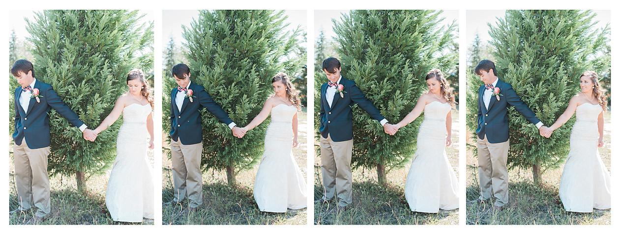 Christmas Tree Farm Wedding in Lexington, SC   Alana and Jonathan ...