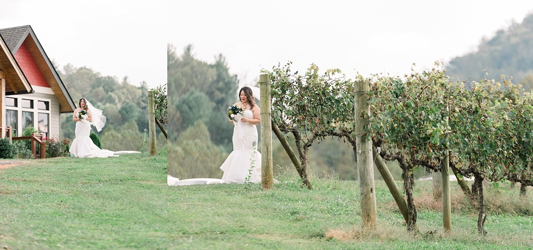 bride coming down aisle addison farm vineyard wedding in asheville nc mountain elopement